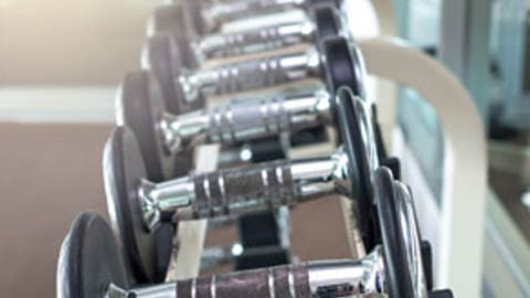 A rack of dumbbells at a fitness center